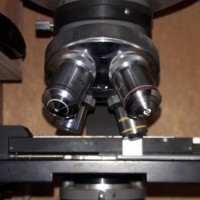 میکروسکوپ دوچشمی آزمایشگاهی